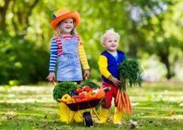 Kinder mit Schubkarre voll mit Gemüse und Obst