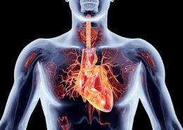 Bildgebung Herz Kardiologie