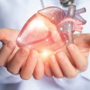 Kardiologe hält Herz in den Händen