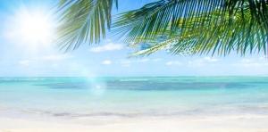 Strand mit Palmen, Fernreise